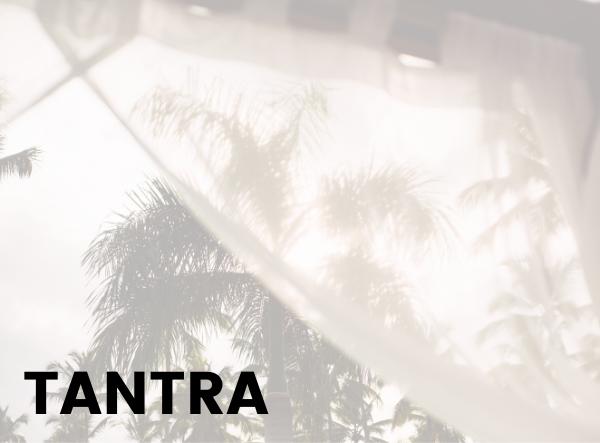 TANTRA III - EL SEXO COMO EVENTO ENERGÉTICO. POLARIDADES ELECTROMAGNÉTICAS Y CÍRCULO DE LUZ.